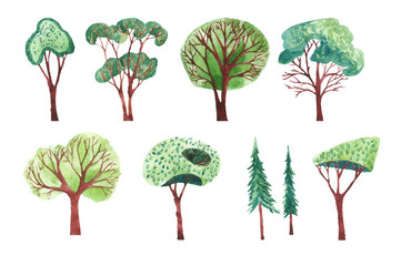 Set of different trees painted by watercolor.