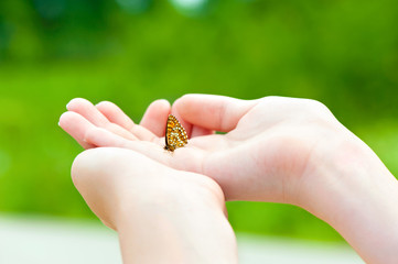 Love the nature. Girl hands holding a small butterfly.