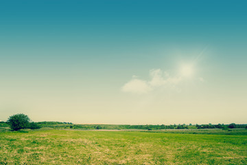 Green fields on a countryside landscape
