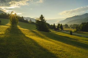 Górska łąka w Alpach Słoweńskich