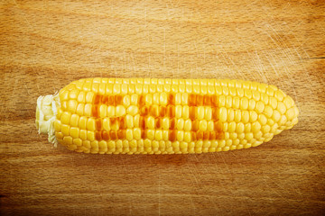 GMO Corn Maize Cob on wooden background