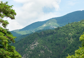 Bulgaria. Rhodopes