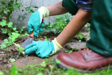 Gärtnerin bei der Arbeit