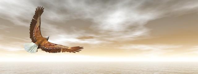 Łysy orzeł latanie - 3D odpłacają się