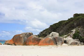 Great Beach in Wilsons Promontory