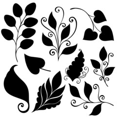 Vector Set of Leaves. Stencils Isolated on White Background