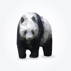 Modern polygon illustration of giant panda, vector