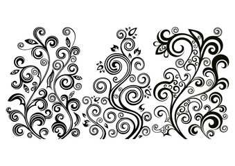 Set of three vector floral illustrations