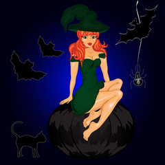 Halloween night background with  witch
