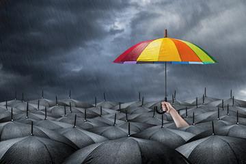 rainbow umbrella concept