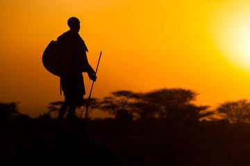Obraz Serengeti Krieger - fototapety do salonu