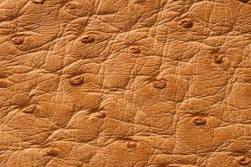 Closeup of seamless beige leather texture