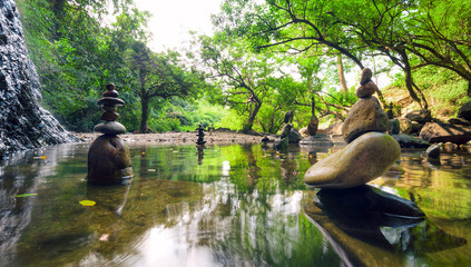 Zen garden. Meditate spiritual landscape of green forest with ca