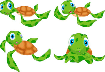various cute sea turtle cartoon