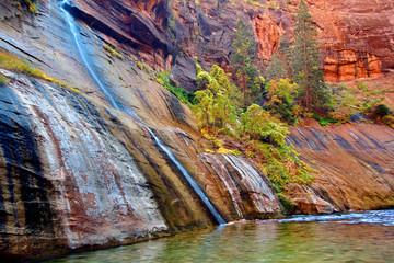 Wall Mural - Mystery Falls Zion National Park Utah