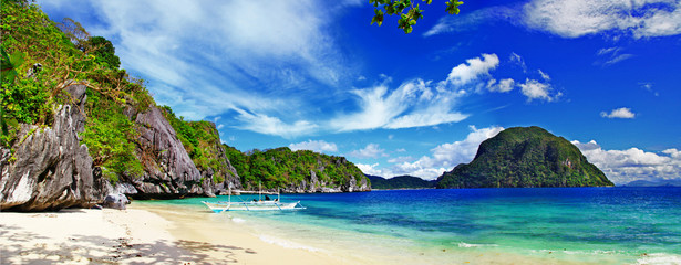 wild tropical beach panorama - tropical escape