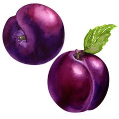 tasty plums