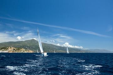 Luxury Yachts. Sailboats participate in sailing regatta.
