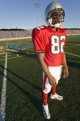Football player standing on field