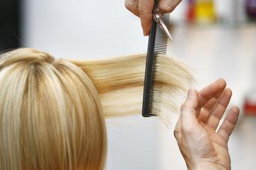 Woman Haircut the hair in salon