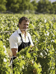 A man at a vineyard