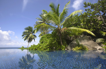 Swimming pool and palm trees of the Banyan Tree Hotel, Anse Intendance, Mahe', Seychelles