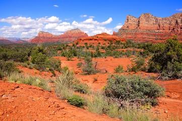 Fototapete - Red rock landscape of Sedona, Arizona, USA