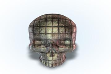 Bathroom Tile Skull Series II
