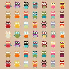 Cute Colorful Owl Pattern | Vector Background
