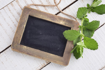 Empty blackboard and melissa