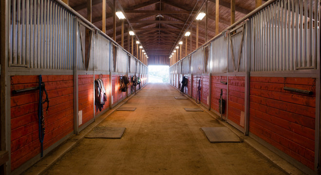 Center Path Through Horse Paddock Equestrian Ranch Stable