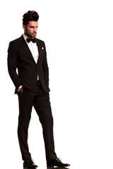fashion man in tuxedo looking to his side