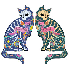 Colorfull cats