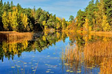 Fototapeta Krajobraz wiejski, jesień nad jeziorem obraz