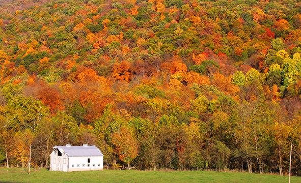 Barn at the foot hill