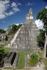 Wall Mural - Ruines maya au Guatemala