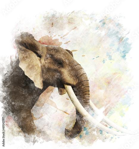 Watercolor Image Of  Elephant