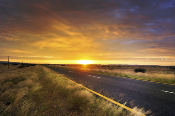 Garden Poster Brown Long road through African country side at sunrise