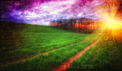 Zachód słońca nad zielonym polem uprawnym w stylu retro