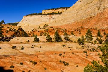 Zion Nationalpark USA bei bestem Wetter