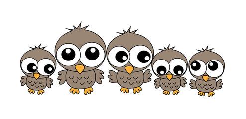 a sweet owl family