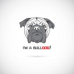 Bulldog head. Vector illustration.