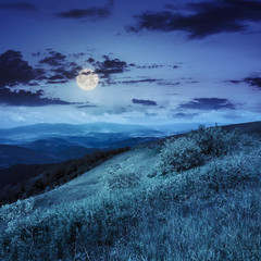 light on mountain slope with forest at night