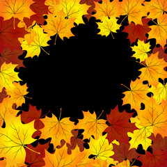 autumn background with maples leaves.