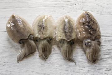fresh squid on white wooden