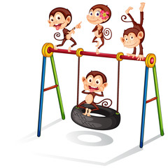 Monkeys and swing
