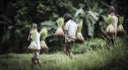 Little boy and girl farmer on green fields