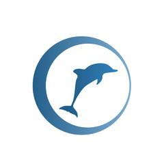 дельфин логотип