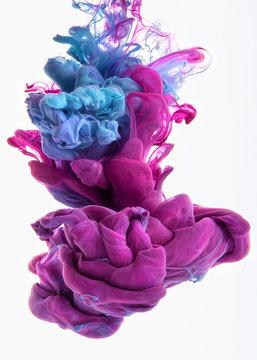 color dop