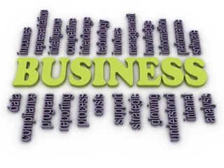 3d image Business concept word cloud background